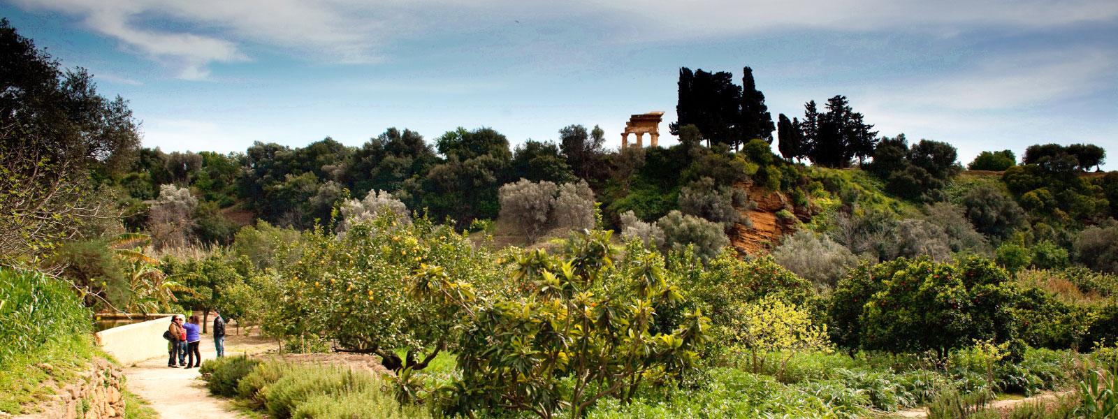 Giardino della Kolymbethra vincenzo cammarata